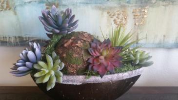 Silk Succulent in Bronze Garden Boat Gift