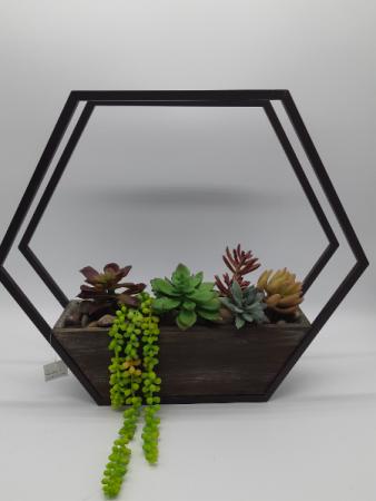 Silk Succulent Indoor/Outdoor Wall Best Seller