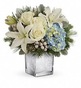 Silver Snow Winter Bouquet in Whitesboro, NY | KOWALSKI FLOWERS INC.