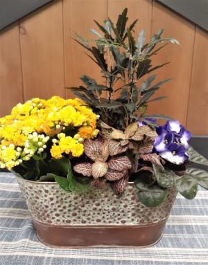 Simple Elegance  in Osoyoos, BC | Osoyoos Flowers