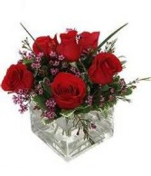 Simple Love One Half Dozen Red Roses