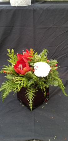 Simple Square Christmas Arrangement  Christmas