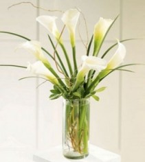 Simple White Calla Lilies Bouquet