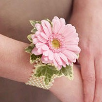 """Giovanna"" Gerbera Daisy Wrist Corsage on a Pearl Wrist Band or Similar Band"