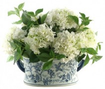 Simplistically Hydrangeas **container may vary