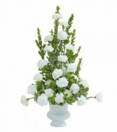 Simply Carnations Sympathy Arrangement