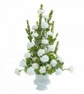 Simply Carnations Sympathy Arrangement
