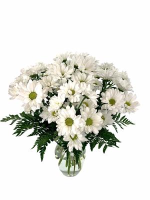 Simply Daisies  Flower Arrangement  in Nevada, IA | Flower Bed