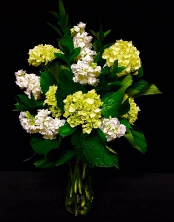 Simply Elegant Hydrangea & White Filler