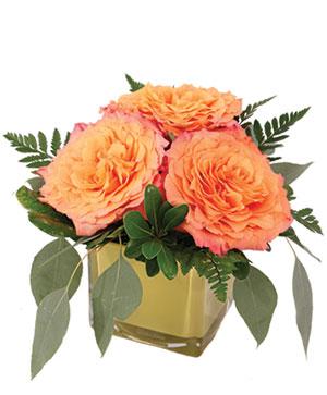 Simply Free Spirit Flower Arrangement in Easton, CT | Felicia's Fleurs