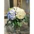 Simply Hydrangeas  fresh arrangnment