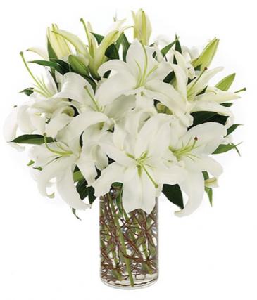 Simply Lily-White  sku # BF178-11KM