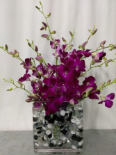 Simply Orchids