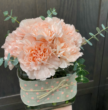 Simply Peach Carnation Arrangement