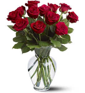 ON SALE! 1 Dozen Any Color Rose in Snellville, GA | SNELLVILLE FLORIST