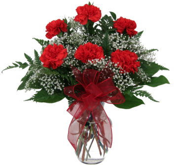 Simply Red Carnations