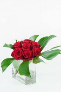 Simply Red Rose Design
