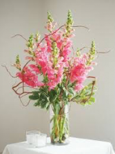 Simply Snaps Pink Snapdragons