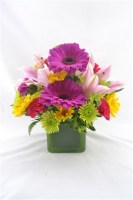 Simply Stunning Vase Arrangement
