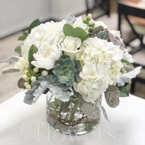 Simply Succulent Vase Arrangement  in Middletown, NJ | Fine Flowers