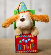 Singing Birthday Dog  Gift