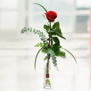 Single Equisite Rose Vase J2
