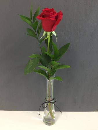 Single Flower in Vase Single flower with greens  PICK UP ONLY