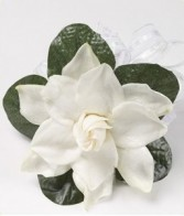 Single Gardenia Pin On Corsage