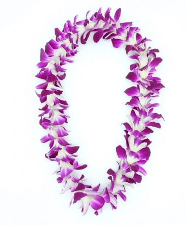 SINGLE LEI - PURPLE Fresh Orchids