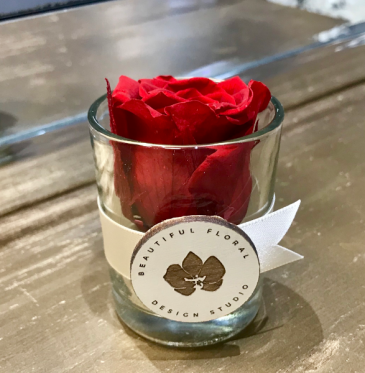 Single Preserved Rose Preserved Rose