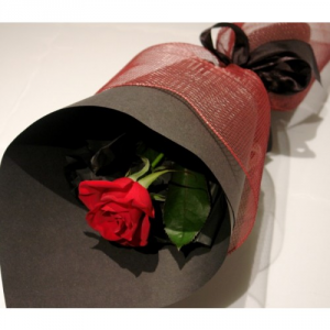 Single red rose  in Oakville, ON | ANN'S FLOWER BOUTIQUE-Wedding & Event Florist