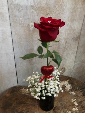Single Red Rose Floral Arrangement