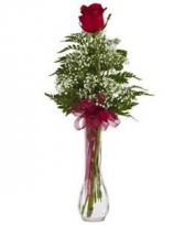 Single Rose Budvase Valentines Day