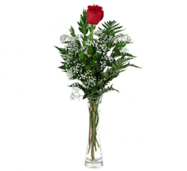 Single Rose - 972 Vase arrangement