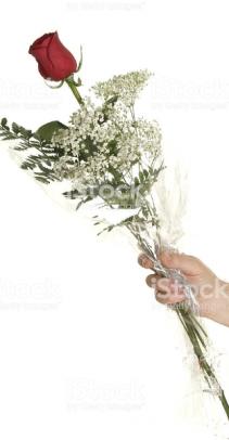 Single roses long stem wrapped arrangement