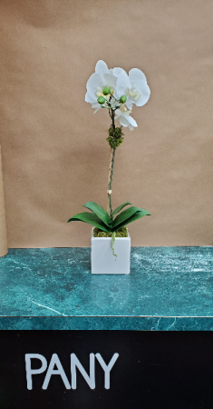 Single White Orchid Arrangement  in New York, NY | PANY SILK FLOWERS