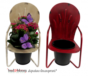 Sitting Pretty Blooming Plant in Mooresville, IN | BUD AND BLOOM FLORIST AND GIFTS