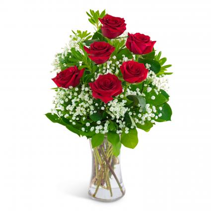 Six Red Roses and a Million Stars Arrangement