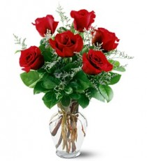 Six Red Roses Vase Arrangement