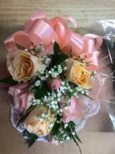 Six rose
