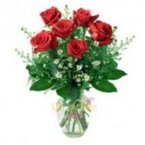 Six Roses Arranged Vase
