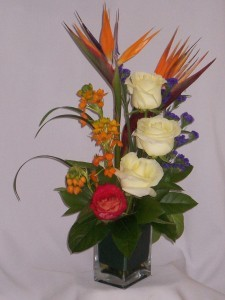 SKYLIGHT - Prince George FLORISTS - FLOWERS in  PRINCE GEORGE BC:   AMAPOLA BLOSSOMS