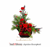 *SOLD OUT* Sleigh Ride BUD & BLOOM SIGNATURE ARRANGEMENT