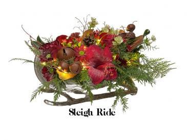 Sleigh Ride Container Arrangement