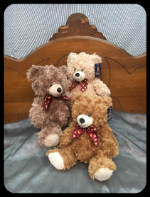 Sm Brown Bear Plush