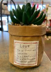 Small artificial succulent