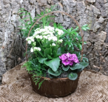 small Basket euro garden
