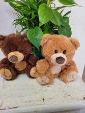 Small Bear - plush