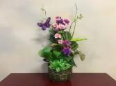 Small Decorated Ceramic Dish Garden Dish Garden