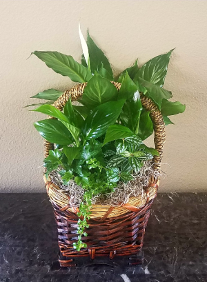 Small Garden Basket Just Made For You! in Ventura, CA | Mom And Pop Flower Shop